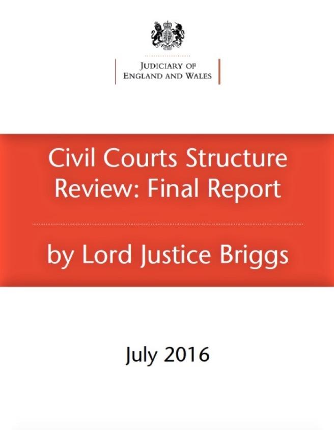 Briggs report 2016 cover